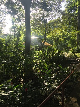 San Pablo, Costa Rica: yoga pavilion