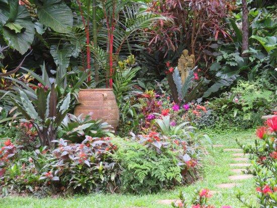 Hunte's Gardens: Hidden Pathway