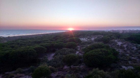 Barcelo Punta Umbria Mar: Vista del parque de los enebrales desde habitación