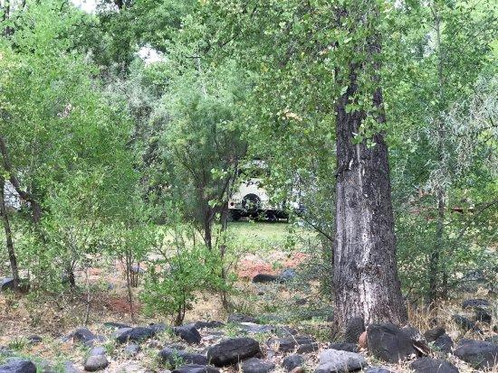 Cornville, AZ: Lo Lo Mai Springs