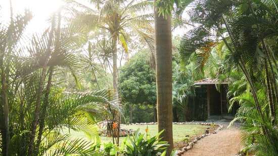 An Awesome First Yoga Retreat