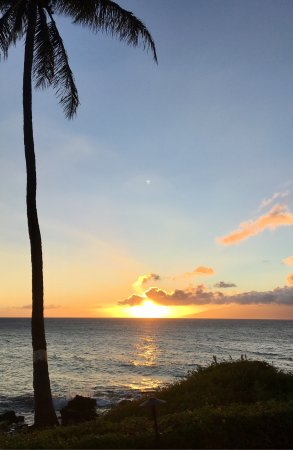 Polynesian Shores Condominiums: photo1.jpg