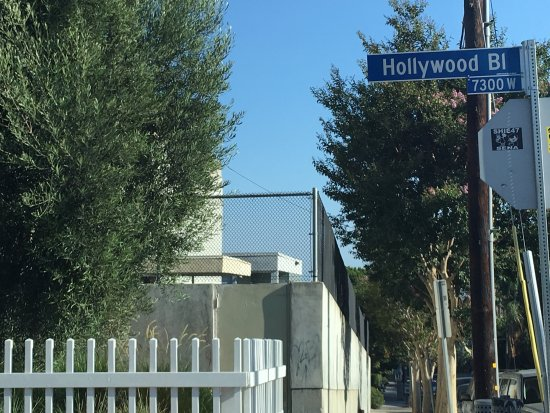 Hollywood: photo8.jpg