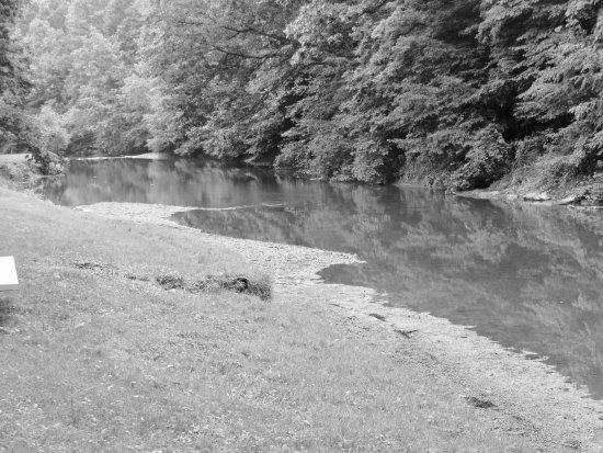 Shelocta, PA: Plum Creek