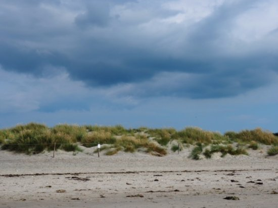 West Wittering, UK: A 20 minute walk or so to East Head beach