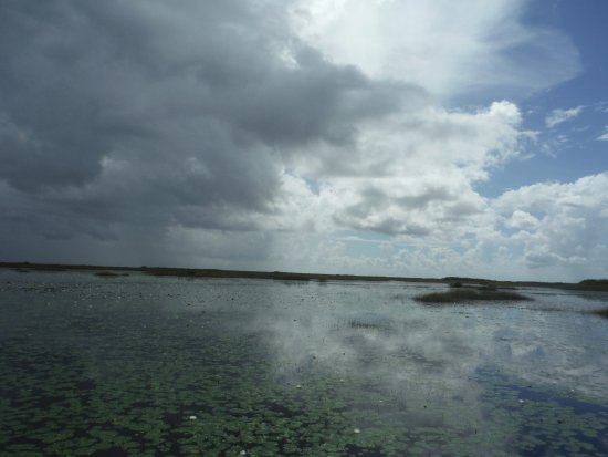 Tigertail Airboat Tours: Cuising the Everglades