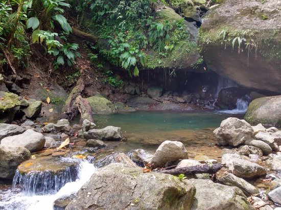 Marigot, Dominica: Our river natural pool and small waterfall