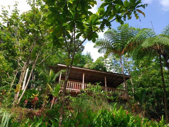Marigot, Dominica: Arawak cottage