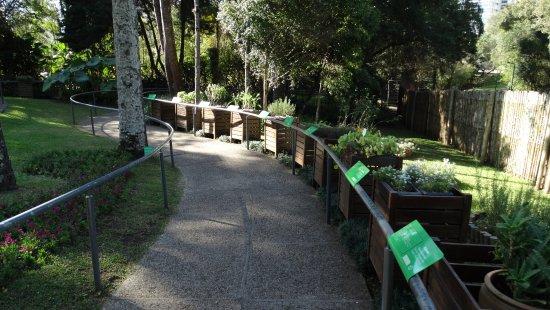 Jardim das Sensacoes
