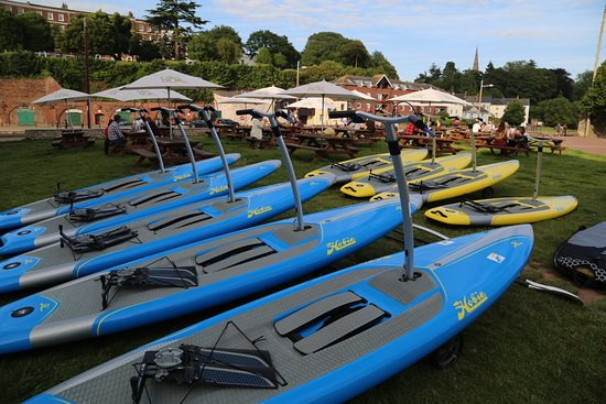 Honiton, UK: Hire one board or the whole fleet. 