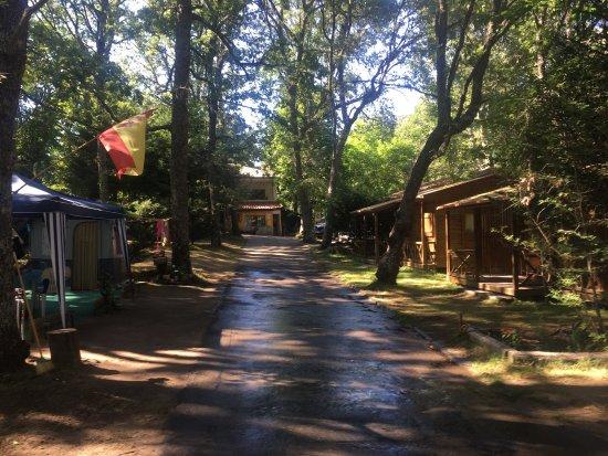 camping sierra de francia - prices & campground reviews (nava de