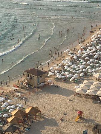 Sheraton Tel Aviv Hotel: Vue du 17 eme étage magique 💝🇮🇱