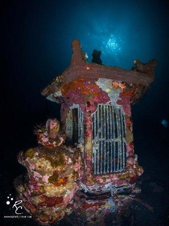 Tulamben, Indonesia: Suci Place: night dive