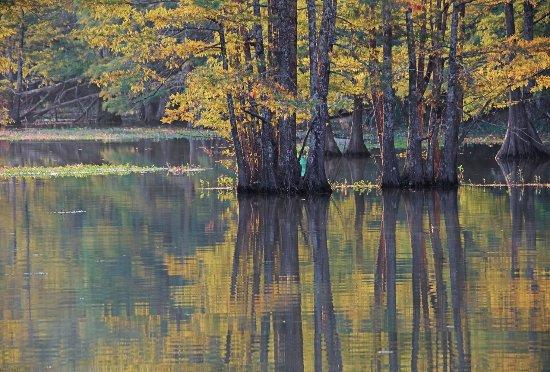 แจสเปอร์, เท็กซัส: LakeSteinhagen