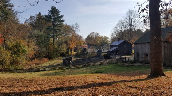 Old Sturbridge Village : They also have livestock at OSV.