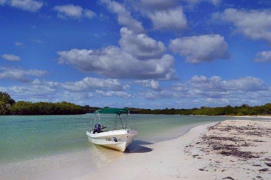 Visit Sian Ka'an: Ideal para pescar