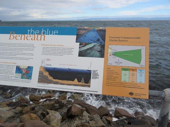 Coles Bay, Australia: Marine site
