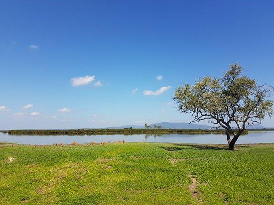 Selous Game Reserve: 20170718_112740_large.jpg