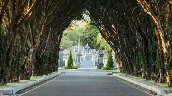 """Glasnevin Cemetery Museum: ...""""Game of Thrones View""""!!"""