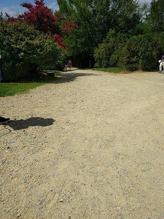Mount Vernon, VA: Gravel pathway down to dock.