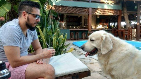 Pousada Vila Bela Vista: Good Luck, el perro del hotel