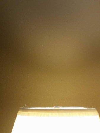 Elkhart, IN: Cobwebs lamps/room