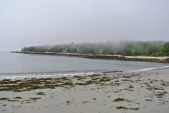 Prospect Harbor, ME: fog clearing on beach on a cool July day