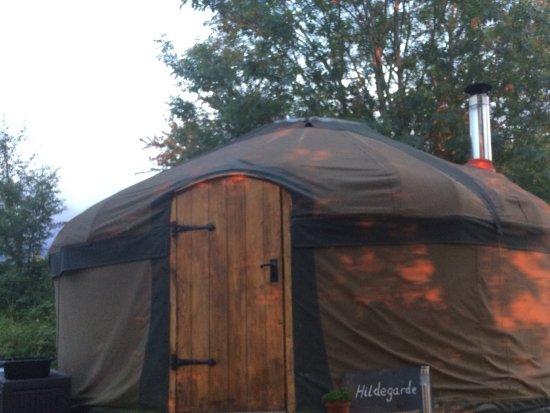 Longhope, UK: Evening sun on the yurt