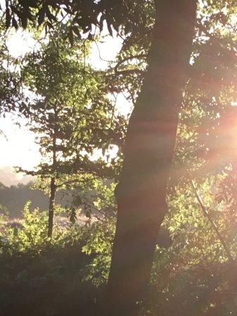Longhope, UK: Sunsets