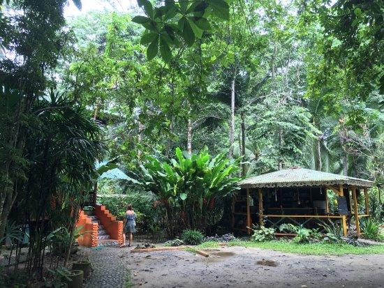 Cabinas Punta Uva: photo0.jpg