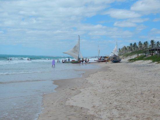 Majorlandia Beach: Praia