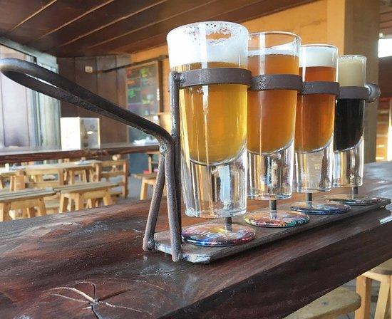 Media perra craft beer san antonio de las minas for Craft beer san antonio