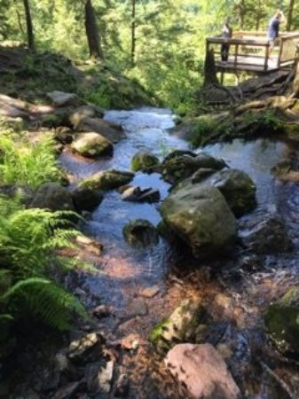 Layton, Нью-Джерси: Stream feeding the falls