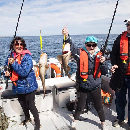 Port aux Basques, Canada: Deep Sea Fishing at its finest. We offer Cod and Mackerel fishing tours.