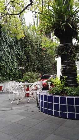 Hotel Casa Gonzalez: IMG_20170725_085951_large.jpg