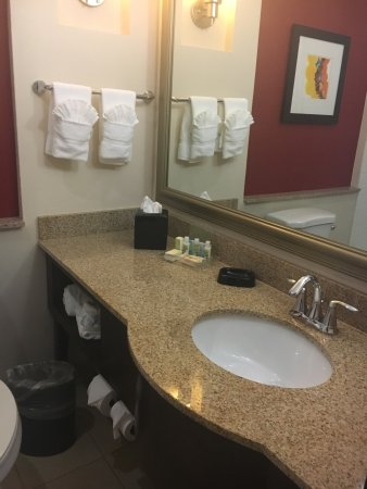 Holiday Inn Dallas DFW Airport - South: photo2.jpg