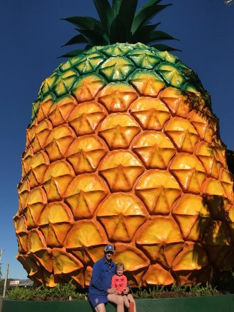 The Big Pineapple: photo0.jpg