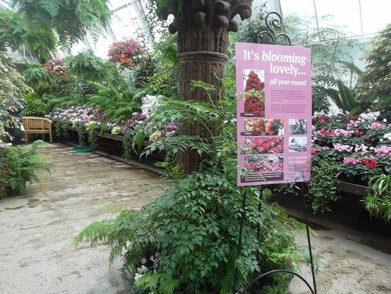 Christchurch Botanic Gardens: Indoor Garden