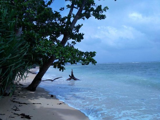South Andaman Island, Ấn Độ: Isolated beach!
