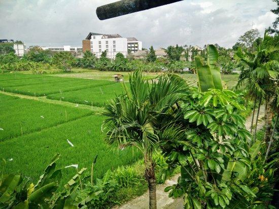 烏瑪瓦圖別墅照片