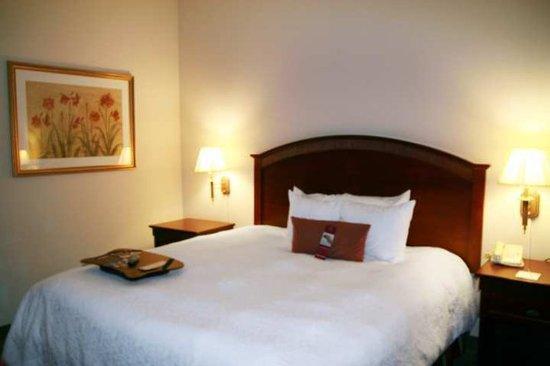 Hampton Inn & Suites Lafayette: Guest Room