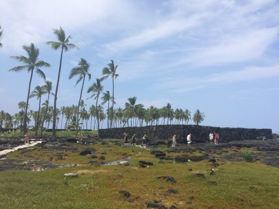 Honaunau, Hawaje: view of the land