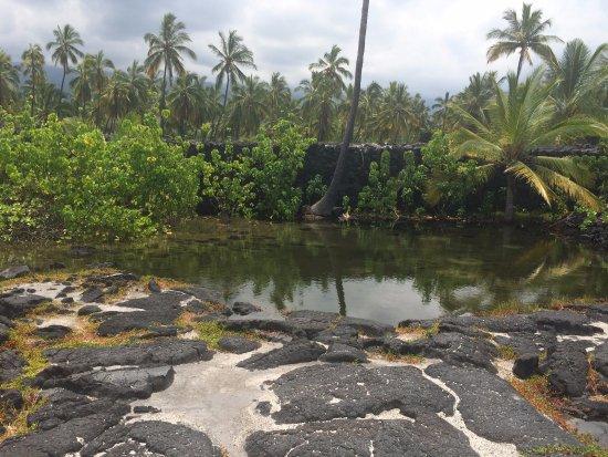 Honaunau, Hawaje: a lake