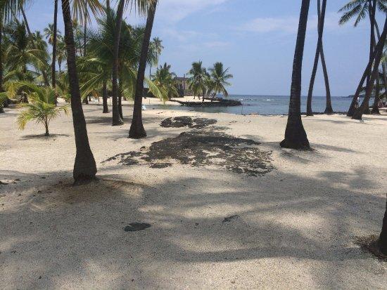 Honaunau, Hawaje: the beach