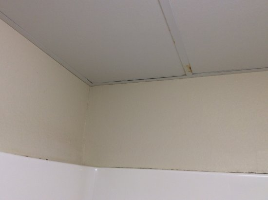 Republic, MO: Rust on ceiling tile support