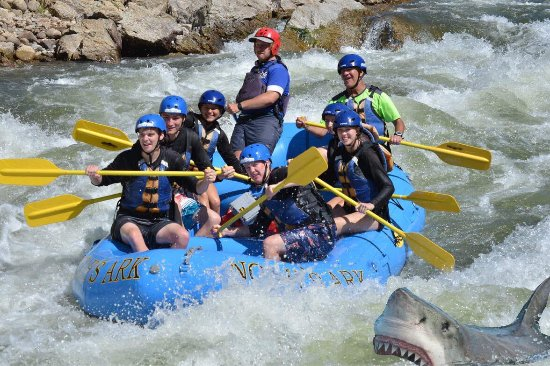 Buena Vista, CO: Wildlife can come close to the boat