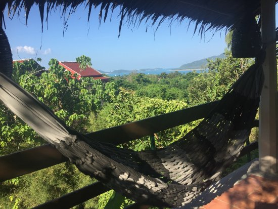 Mangosteen Ayurveda & Wellness Resort: photo1.jpg