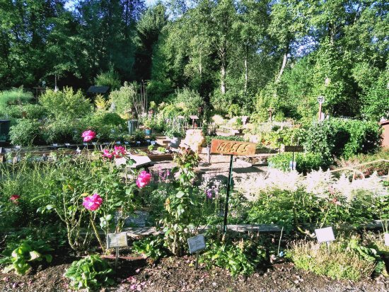 Bellevue Demonstration Garden