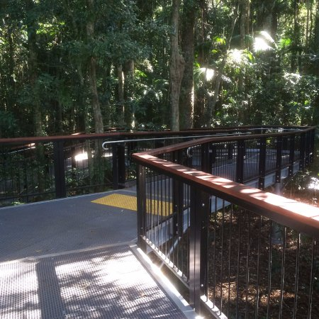 Maleny, Australien: Raised Walkway Through The Forest
