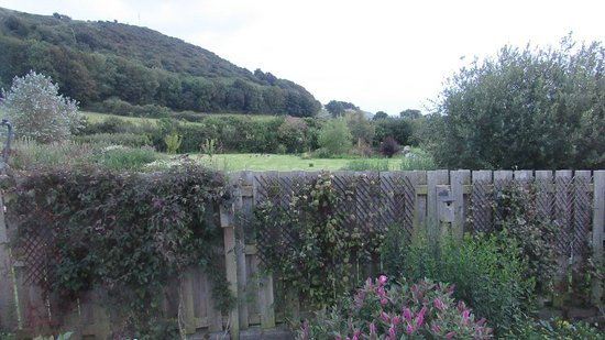Gwennaul Bed & Breakfast: View from room. There are ducks in the field beyond the fence.